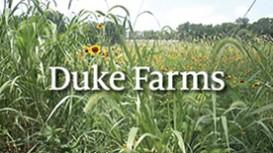 02-DOCUMENTARY_Duke Farms Orientation