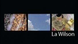 05-EXPERIMENTAL_La Wilson